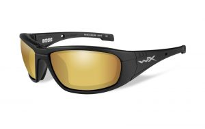BOSS Polarized Venice