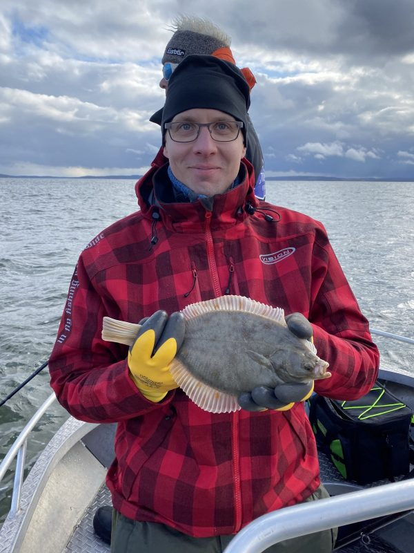 hauenakalastus rügenissä voi antaa sivuosumia