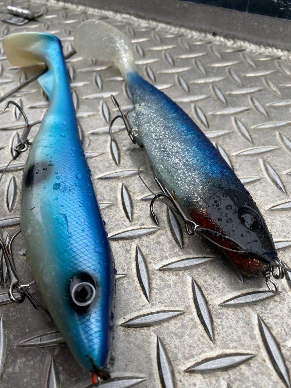 Hauenkalastus rügenissä tapahtuu usein sinivalkoisilla shadeillä – koska ne vaan toimivat ylivoimaisesti parhaiten!