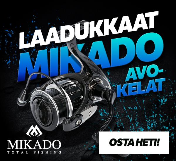 Laadukkaat Mikado avokelat